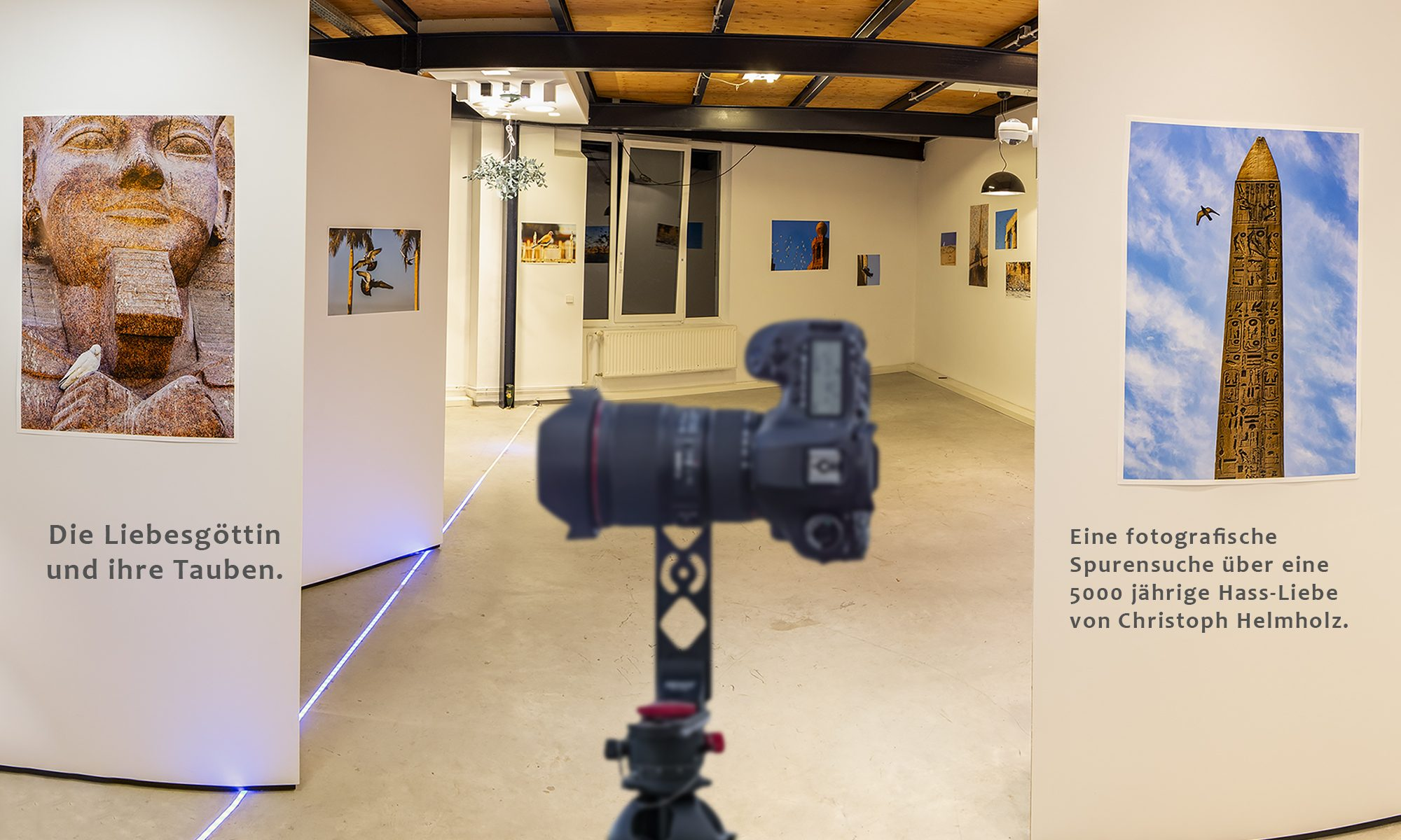 Interaktive 360°- & Videoproduktion